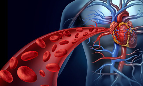 10 نشانه گردش خون ضعیف در بدن