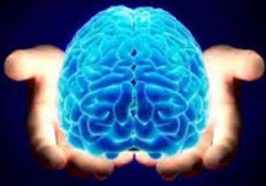 فعالیت بدنی بهترین راه سلامت مغز است