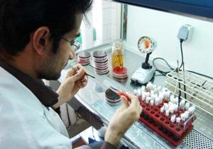 ارتباط کمبود ویتامین D و سرطان پروستات