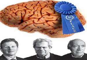 برندگان جایزه تحقیقات مغز 2016