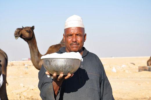 خواص شیر شُتُر