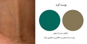 چطور میتوان رنگ پوست را تشخیص داد ؟