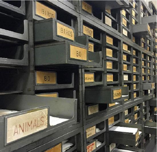معرفی 10 کتابخانه مشهور و شگفت انگیز دنیا (عکس) مجموعه : مکان های دیدنی جهان معرفی 10 کتابخانه مشهور و شگفت انگیز دنیا (عکس) عکس معرفی 10 کتابخانه مشهور و شگفت انگیز دنیا     در این مطلب قصد داریم به معرفی 10 کتابخانه مشهور و شگفت انگیز دنیا که حتما باید قبل از مرگ دید، بپردازیم.     فرقی نمیکند به دلیل بوی مستکنندهی کتابهای قدیمی باشد یا میلیونها ماجرا که منتظر هستند کسی کشفشان کند، اگر یک کرمکتاب را همراه خودتان به کتابخانه ببرید، شاید مجبور شوید مدت طولانی همان جا بمانید. با سر زدن به کتابخانهی محلتان، و هزاران هزار کتاب که آن جا انتظارتان را میکشند – از کتابهای برندهی جایزهی پولیتزر گرفته تا کتابهای کوچک و جیبی جک و لطیفه – میتوانید بهترین سرگرمی رایگان را در شهرتان تجربه کنید.     فرقی نمیکند چهقدر کتابخانهی شهرتان را دوست دارید، ولی هیچ حسی بهتر از این نیست که یک ساختمان تاریخی پر از کتابهای قدیمی و باستانی را در یک روز تعطیل کندوکاو کنید. به خاطر همین، در ادامه به ۱۵ کتابخانهی حیرتانگیز و خارقالعاده در سراسر ایالات متحده اشاره میکنیم، که شاید همین حالا، با خواندن این مطالب برای رفتن به این مکانها و دیدنشان بیتابی کنید.    1. کتابخانهی مورگان، نیویورک  آنچه پیشتر به عنوان مجموعهی شخصی سرمایهدار بزرگ پیرپونت مورگان شناخته میشد، هماکنون در معرض عموم قرار گرفته است، و قطعا هر بینندهای را به هیجان وا میدارد. از سبک معماری ساختمان این کتابخانه که به شیوهی پالاتزو مربوط به دوران رنسانس ایتالیا است گرفته تا مجموعهای ارزشمند از کتابها و دستنوشتههای کمیاب – مانند کتاب مقدسی که در ۱۴۵۵ توسط یوهانس گوتنبرگ چاپ شد – همه و همه باعث میشوند همه ساله گردشگرانی از سراسر دنیا مشتاقانه برای دیدن این فضای شگفتانگیز ادبی لحظهشماری کنند.  معرفی 10 کتابخانه مشهور و شگفت انگیز دنیا (عکس) کتابخانه    2. کتابخانهی عمومی بیلینگز، مونتانا  این کتابخانهی عمومی که در خدمت مردم شهرهای بیلینگز و یِلواِستون بود، به تازگی به ساختمانی جدید، با نورپردازی عالی و به مساحت ۶۱۳۰ مترمربع منتقل شده است. این میراث قدیمی با سبک و طراحی باشکوه و هندسی، برای عاشقان کتاب و مطالعه، مکانی شگفتانگیز است که میتوانند یک روز کامل را در آن سپری کنند.  معرفی 10 کتابخانه مشهور و شگفت انگیز دنیا (عکس)     3. کتابخان