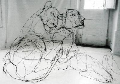 مجسمه های سیمی از حیوانات