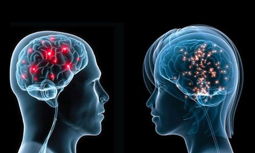 آیا مغز زنان کوچکتر از مغز مردان است؟