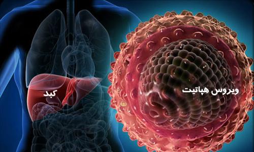 آنچه باید در موردهپاتیت  Cبدانید