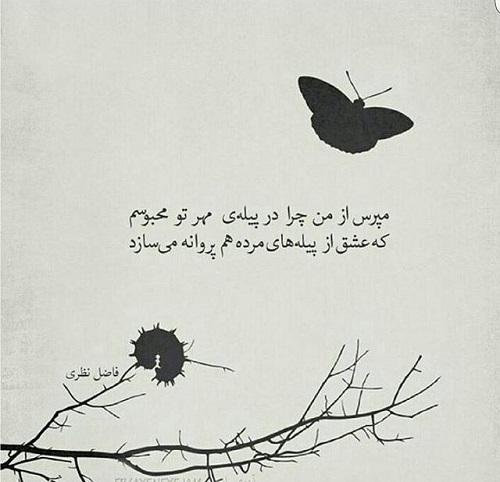 عکس نوشته و شعرگرافی 2 آبان